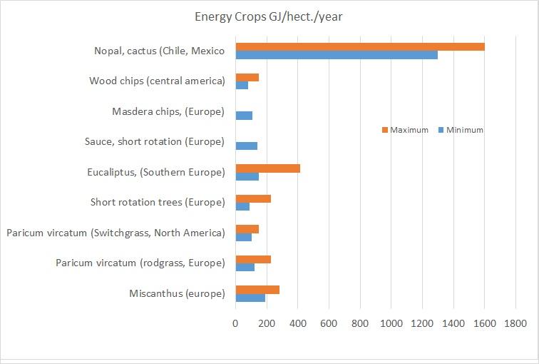 EGE-energy-crops-1